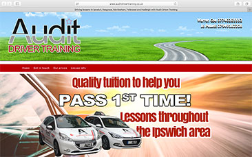 Audit Driver Training