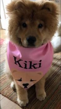 Kiki In Lock Down